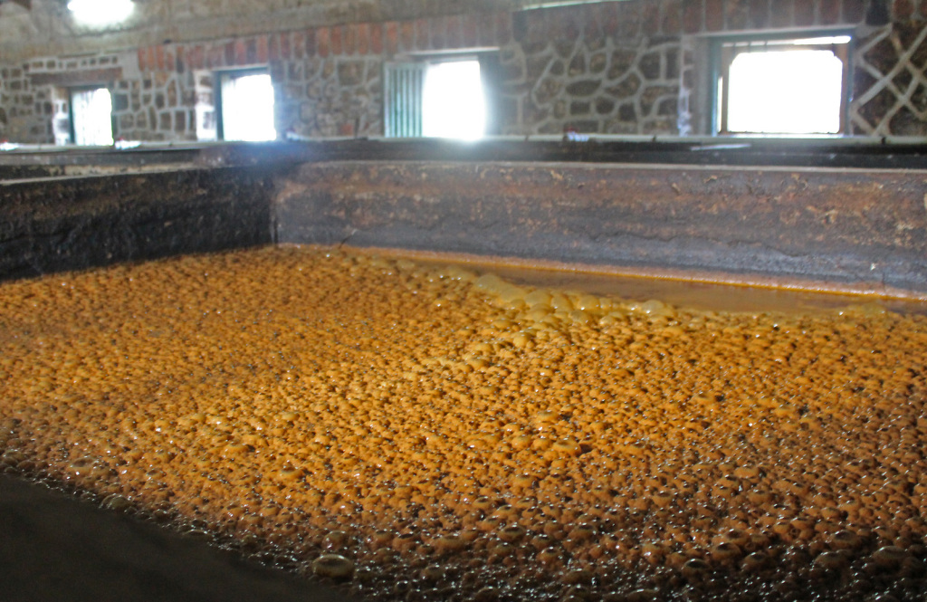 Rivers Rum Distillery, Grenada